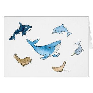 Sea mammals card
