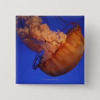 Sea nettle jellyfish 15 cm square badge