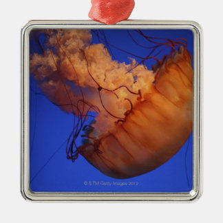 Sea nettle jellyfish christmas ornament