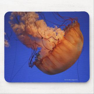 Sea nettle jellyfish mouse mat