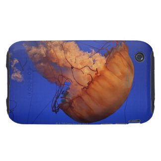 Sea nettle jellyfish tough iPhone 3 cover