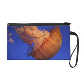 Sea nettle jellyfish wristlet clutches
