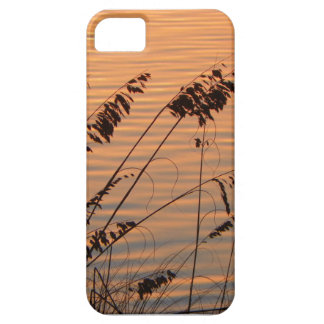 Sea Oats at Sunset Phone Case