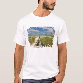 Sea oats Uniola paniculata) growing by beach, T-Shirt