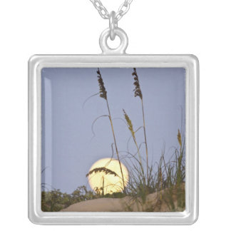 Sea Oats Uniola paniculata) growing on sand Silver Plated Necklace
