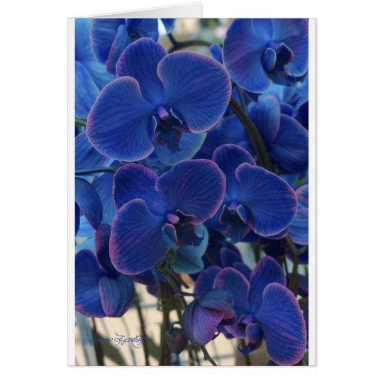 SEA OF BLUE CARD