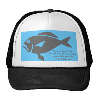 """""""Sea of Knowledge"""" Hat"""