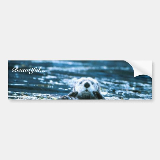 Sea Otter Bumper Sticker