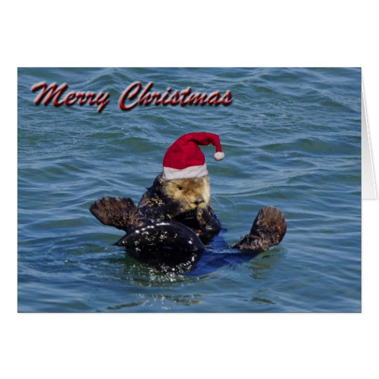 Sea Otter Christmas Card