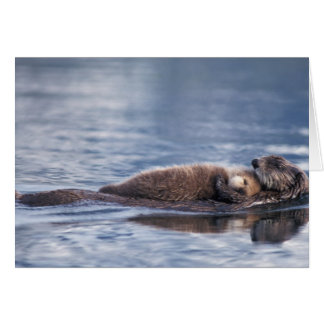 sea otter, Enhydra lutris lutris, mother with 2 Greeting Card