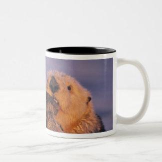 Sea Otter, Enhydra lutris Two-Tone Coffee Mug