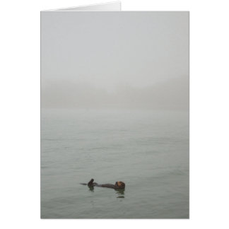 Sea Otter floating in a fog Card