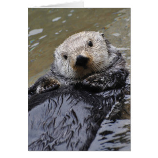 Sea Otter Frameable Art Card