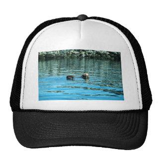 Sea Otter Mesh Hats