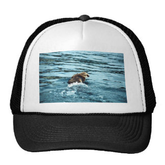 Sea Otter Mesh Hat