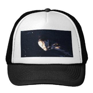 Sea Otter Trucker Hats