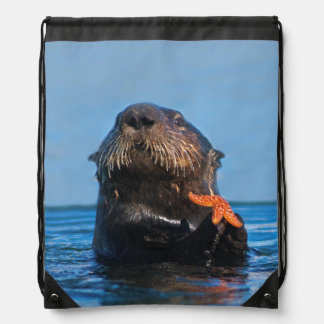 Sea Otter in Morro Bay Shows Off Red Starfish Rucksack