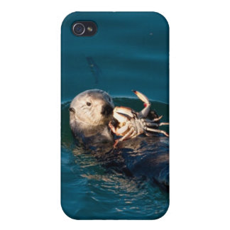 Sea Otter iPhone 4/4S Case