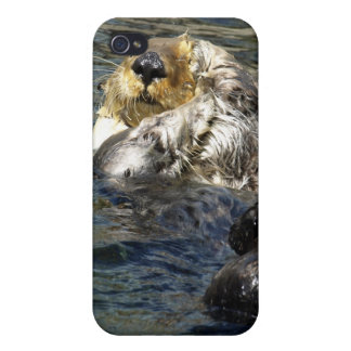 Sea Otter iPhone Cases iPhone 4/4S Covers