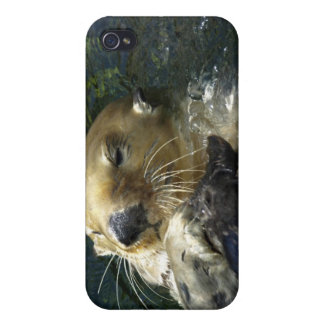 Sea Otter  iPhone Cases iPhone 4 Cover