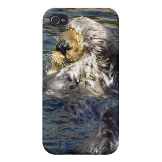 Sea Otter  iPhone Cases Case For iPhone 4