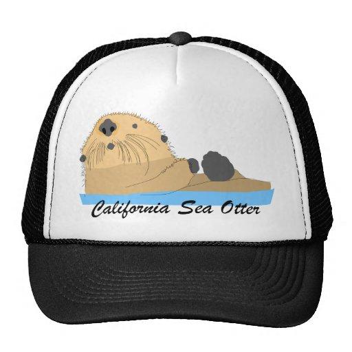 Sea Otter Looks Up Mesh Hats