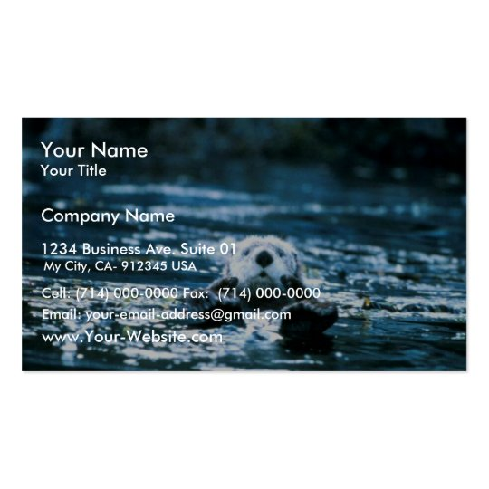 Sea Otter Pack Of Standard Business Cards