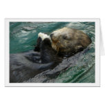 Sea Otter Snacking Greeting Card