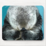 Sea Otter Snoozing Mouse Pad