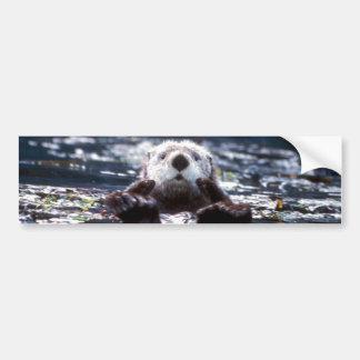 Sea Otter Swimming Bumper Sticker