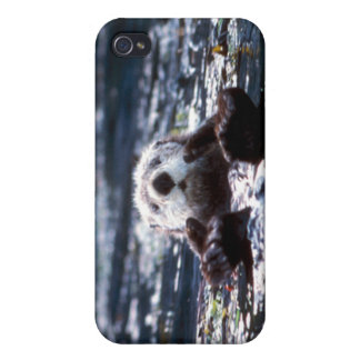 Sea Otter Swimming Case For iPhone 4