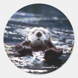 Sea Otter Swimming Round Sticker