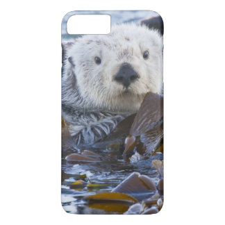 Sea otter wrapped in kelp iPhone 8 plus/7 plus case