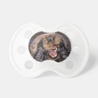 Sea Otters, Enhydra lutris 6 Baby Pacifier