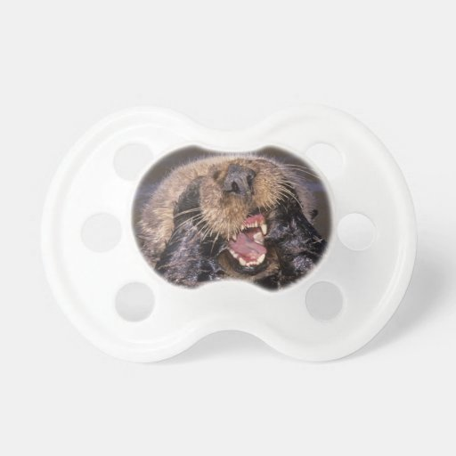 Sea Otters, Enhydra lutris 6 Baby Pacifiers