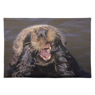 Sea Otters, Enhydra lutris 6 Placemat