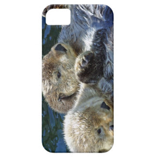 Sea-otters iPhone 5 Cover
