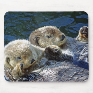 Sea-otters Mouse Mat