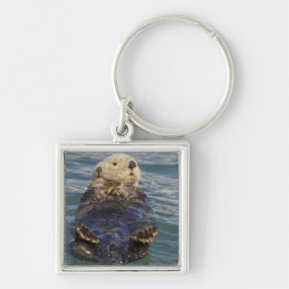 Sea otters play on icebergs at Surprise Inlet Silver-Colored Square Key Ring
