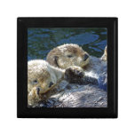 Sea-otters Small Square Gift Box