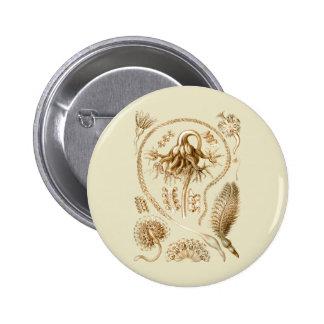 Sea Pens 6 Cm Round Badge