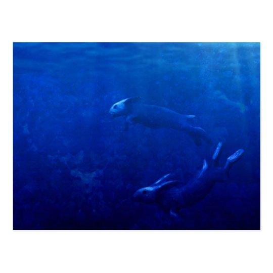 Sea Rabbits Dance Beneath the Waves Postcard