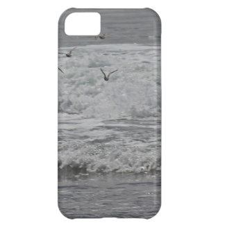 Sea & Sand Pipers! iPhone 5C Case