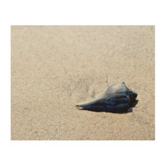 Sea Shell Blue Wood Wall Art
