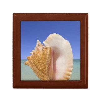 Sea Shell Close Up Small Square Gift Box