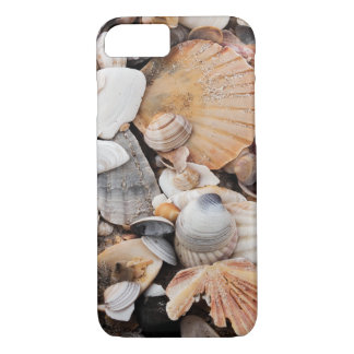 Sea shell iPhone 7 case