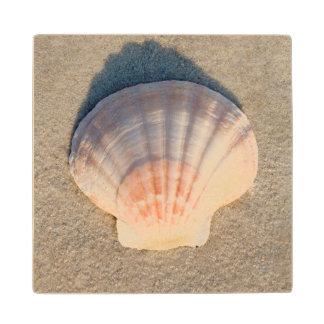 Sea Shell Laying On Sandy Beach Maple Wood Coaster