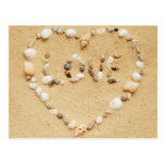 Sea Shell Love Heart Postcards