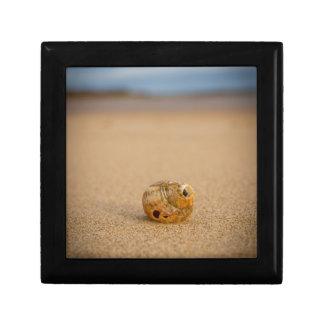 Sea Shell on the Beach Gift Box