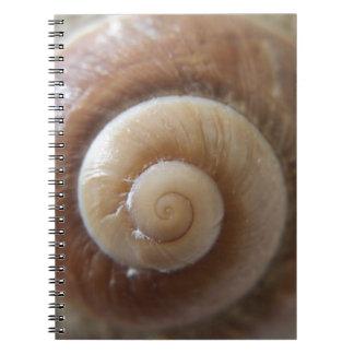 sea shell photograph notebook